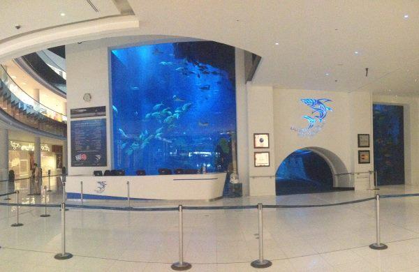 Mořské-akvárium-v-luxusním-obchodním-domě-Dubai-Mall
