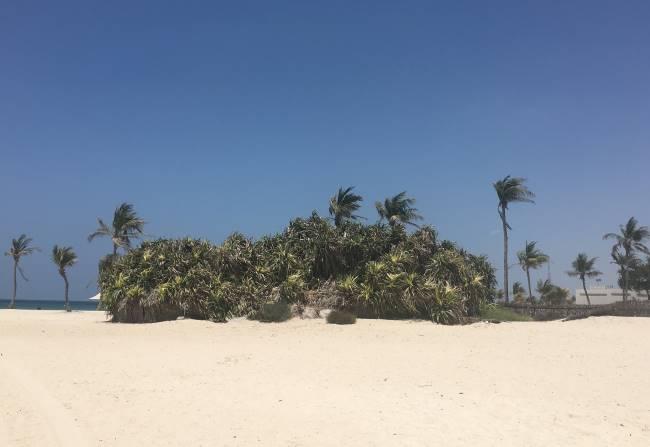 Pláž-v-Dubaji