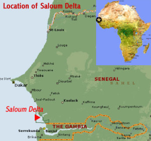 Region Saloum v Senegalu