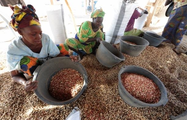 Ceny potravin z trhů jsou v Senegalu levnější